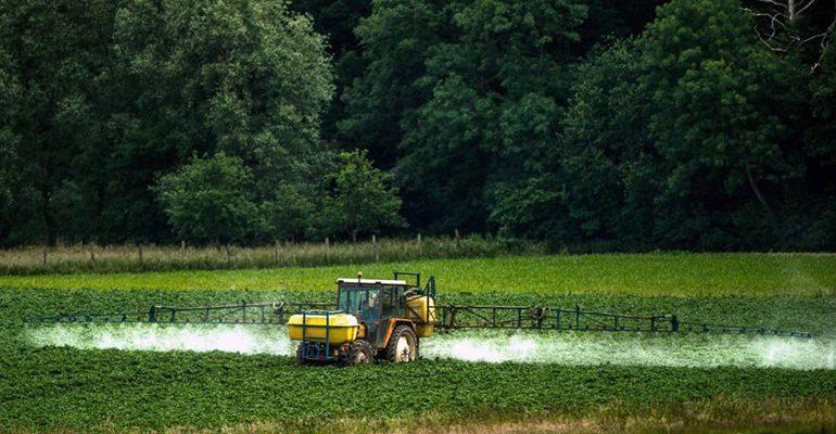 La justicia europea obliga a desclasificar informes sobre la peligrosidad del glifosato